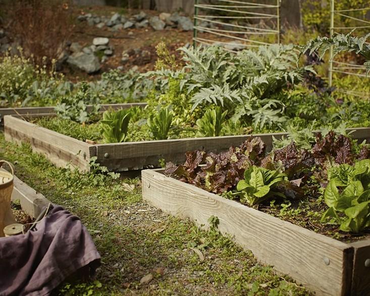 mollie katzen edible garden overall berkeley; Gardenista